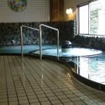 数馬の湯 浴場