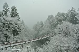 冬の石舟橋