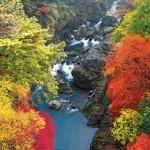 紅葉の鳩ノ巣渓谷
